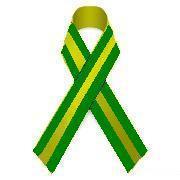 fiocco_verde_giallo