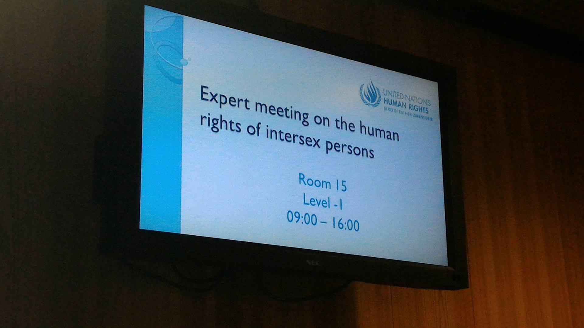 UN_meeting_intersex