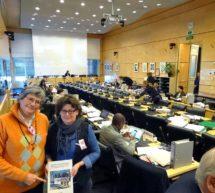 Il CRC sollecita l'Italia a proteggere le persone intersex